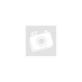 FTC-BC féktisztító spray (500 ml)